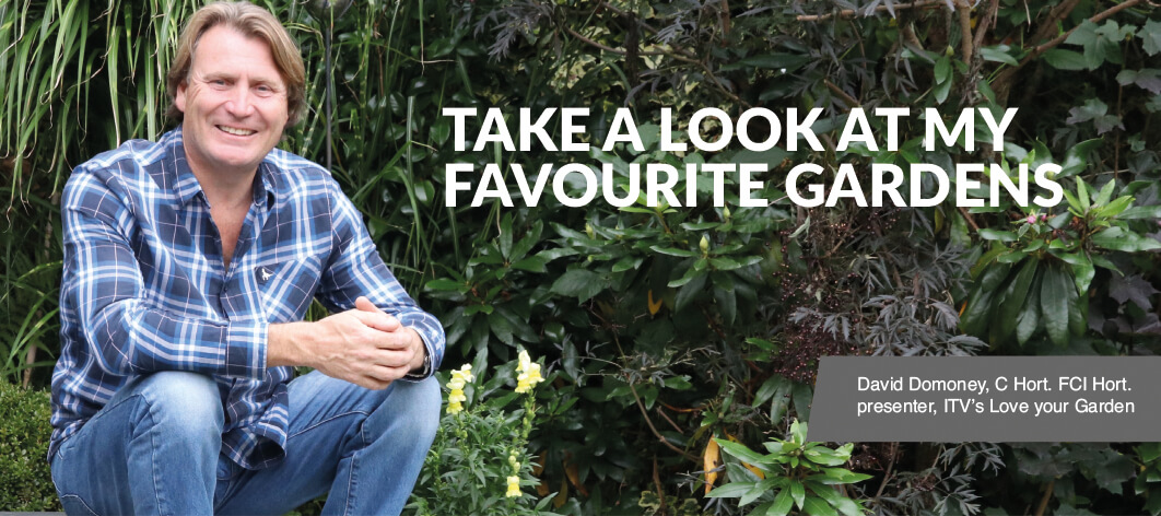 Take a Look at David Domoney's Favourite Pavestone Gardens