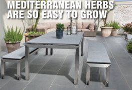 Grow Fruit and Vegetables on your Patio